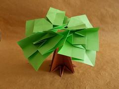 Baobab Tree - Toshikazu Kawasaki (Chouett'origami) Tags: tree origami arbre baobab toshikazukawasaki tanteidanconvention21