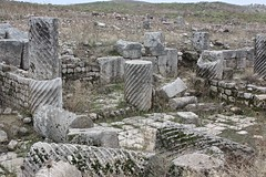 The agora, Apamea, Syria (susiefleckney) Tags: apamea syria hama ghabplain seleucid roman byzantine arab ruins archaeology ancient agora westernasia