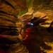 Laurel Caverns 16