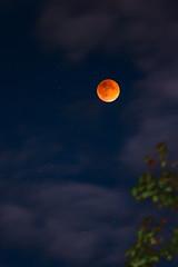 Eclipse (Michaelbacki) Tags: longexposure red sky orange moon night clouds stars solar eclipse lunar nikond3200