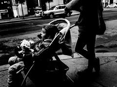 PERCEPTIVE REFLECTIVE (Galantucci Alessandro) Tags: street city portrait people blackandwhite bw white black monochrome contrast photography monocromo town eyecontact europe strada hungary gente candid budapest streetphotography documentary east persone grainy fotografia bianco ritratto nero biancoenero citt contrasto fotografiadistrada documentaristica