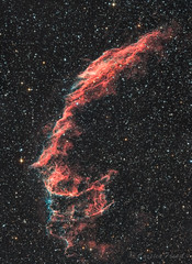 NGC6995 - Cirrusnebel (Schleiernebel) (cfaobam) Tags: germany bayern deutschland photo ngc telescope astrophotography goto astronomy f4 ts astrophoto miltenberg g11 lodestar teleskop koma odenwald astronomie littlefoot deepsky ed80 ts10 astrofoto obernburg skywatcher 6995 losmandy pixinsight astrofotografie astrodon ontc cirrusnebel eqalign cfaobam flattner aplanatic schleiernebel cfaobamhome newtonontc newtonontcnewton1000mm f4gpu korrectorgpu aplanatickoma korrectormoraviang28300moravian g28300moravian g28300fwg28300fw