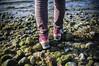 Rannalla (timoppi) Tags: nature finland helsinki outdoor balticsea syksy vuosaari kallahti ulkoilu