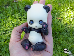 Happy Birthday Felicity!!!! (❀> Lily <❀) Tags: birthday bear pet outside happy doll panda lily bjd soom felicity sora pandy