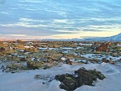 Í Svínahrauni (skolavellir12) Tags: winter island lava iceland outdoor svínahraun