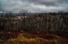 warm winter storm.... (Alvin Harp) Tags: wisconsin december 2016 scenicview trees rainyday autumncolors overcast stormclouds sonyilce7rm2 fe35mmf14za naturesbeauty nature alvinharp