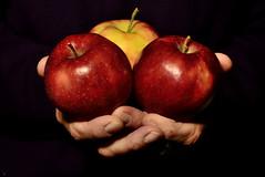Have an apple! (photonsdanslaboite) Tags: d7000 nikon50mmf14 apples food fruit photonsdanslaboite