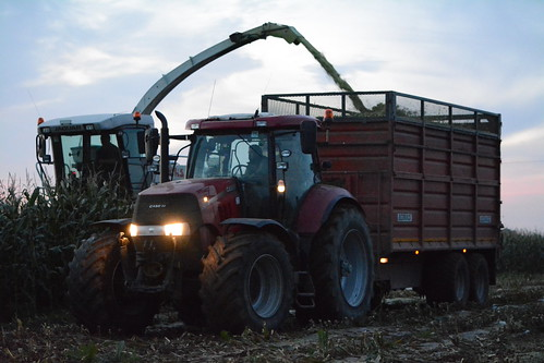 Claas Jaguar 890 SPFH filling a Redrock Silage Trailer drawn by a Case IH Puma 200 Tractor