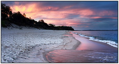 Dusk on the Shoreline (juliewilliams11) Tags: outdoor photoborder sand shore dusk sunset cloud coast wave water pink portstephens newsouthwales australia shoalbay summer