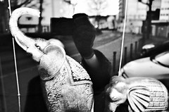 (formwandlah) Tags: kaiserslautern window fenster spiegelung reflection mehrfachbelichtung mysterious mysteriös melancholic melancholisch dark noir gloomy strange urban candid city night nacht sureal bizarr skurril abstrakt abstract darkness light bw blackwhite black white sw monochrom high contrast ricoh gr pentax formwandlah elephant elefant elephants elefanten figuren figur figure selfie self portrait selbstportrait