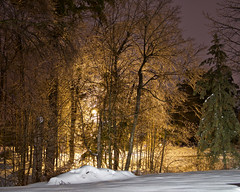 Ice Storm 3 (CdnAvSpotter) Tags: navan ice storm 2017 ottawa snow winter night shot long exposure tripod luminar macphun canoneos1dxmarkii canonpro canon 1dxii 1dxmarkii outdoor scenery winterwonderland icy slippery