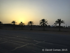 Riyadh - Banban (CATDvd) Tags: alriyad appleiphone6 arabiasaudita arabiasaudí aràbiasaudita banban catdvd davidcomas desert desierto httpwwwdavidcomasnet june2015 kingdomofsaudiarabia ksa landscape paisaje paisatge reinodearabiasaudita riad riyadh saudiarabia الرياض العربيةالسعودية درةالرياض