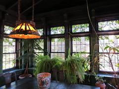 Breakfast Room (pirate johnny) Tags: glensheen duluth mansion minnesota fern