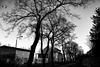 - BRB in SW - (-wendenlook-) Tags: sw bw monochrome brandenburganderhavel sony a7ii alpha7ii 3528 zeiss urban grafitti bäume trees f13 180 iso100