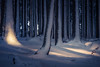 Winter (sedregh (off for some days)) Tags: eifel germany deutschland schnee snow winter landschaft landscape forest wald licht light