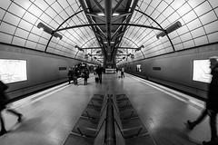 under the airport / in transition (Özgür Gürgey) Tags: 12mm 2017 bw d750 hamburg nikon samyang architecture fisheye lines seats station street subway airport