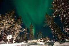IMG_2910 (F@bione©) Tags: lapponia lapland marzo 2017 husky aurora boreale northenlight circolo polare artico rovagnemi finalndia finland