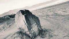 Memorial on the beach (freddylyon69) Tags: dingleroad kerry blackandwhite sea memorial beach holiday souvenirs ireland