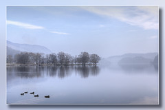 Tranquility #2 (Bill McKenzie / bmphoto) Tags: trossachs reflections lochard landscape tranquility tranquil best birds ducks scotland