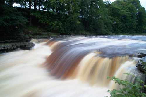 "Aysgarth Falls (Lower) • <a style=""font-size:0.8em;"" href=""http://www.flickr.com/photos/104283043@N05/20523966963/"" target=""_blank"">View on Flickr</a>"