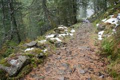 Nationalpark Hohe Tauern in der Umgebung der Rudolfshtte am Weisee-bw_20150926_2704.jpg (Barbara Walzer) Tags: uttendorf nationalparkhohetauern weissee gletscherwelt berghotelrudolfshtte weisseegletscherwelt alpinzentrumrudolfshtte 260915