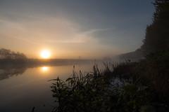 A Misty River Bann (Glenn Cartmill) Tags: uk morning autumn ireland sky mist reflection fall misty sunrise canon river eos october unitedkingdom walk glenn northernireland sunreflection portadown 2015 riverbann countyarmagh cartmill 650d