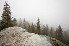 Koli - Finland (Sami Niemeläinen (instagram: santtujns)) Tags: mountain nature forest suomi finland landscape hiking north maisema metsä luonto koli karjala retki lieksa trekkin carelia patikka pohjois patikointi