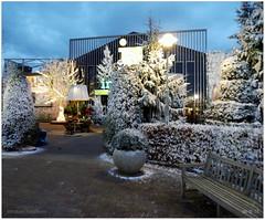DSCI8460 (aad.born) Tags: christmas xmas weihnachten navidad noel  tuin engel nol natale  kerstmis kerstboom kerst boi kerststal  kribbe versiering kerstshow  kerstversiering kerstballen kersfees kerstdecoratie tuincentrum kerstengel  attributen kerstkind kerstgroep aadborn nativitatis
