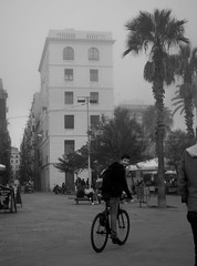 Foggy BCN-5 (dACE :)) Tags: barcelona people bw espaa plants sports spain arquitectura plantas bcn foggy bikes cel catalonia bn arbres barceloneta deporte catalunya gent niebla bicicletas carrers catalua plantes espanya smail boira esports bicicletes