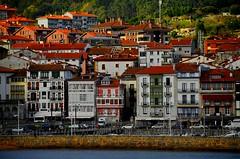 _DSC1391 (andoni.guridi) Tags: december bizkaia euskadi basquecountry diciembre paisvasco lekeitio basquecoast 2015 costavasca leaartibai