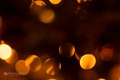 Christmas glitter (lg-photographic) Tags: christmas xmas winter light orange holiday blur color tree colors yellow glitter night germany dark weihnachten deutschland lights evening abend licht nikon warm mood moody nacht bokeh indoor innen gelb fest weihnachtsbaum celebrate farbe ferien dunkel stimmung lichter farben feiern weichzeichner flickrfriday christmastraditions funkeln d5200