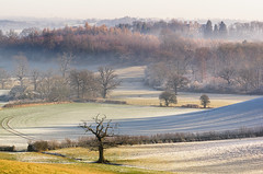 Weethley to Ragley on a Winter Morning (jactoll) Tags: weethley ragleyhall warwickshire winter frost mist misty trees light landscape sony a7ii zeiss 70200mmf4 jactoll