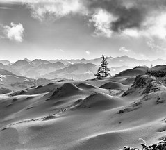 The Waves - die Wellen (W_von_S) Tags: winter waves wellen ocean meer tree landscape snowlandscape snowscape schnee schneelandschaft panorama paysage paesaggio natur nature schwarzweis blackwhite bw mountains alpen alps alpine alpinepanorama alpenblick alpenpanorama alpinewinterpanorama alpineview steinplatte tirol tyrol austria österreich sony wvons werner outdoor 2017 januar january berge landschaft einfarbig waidring heykey wow