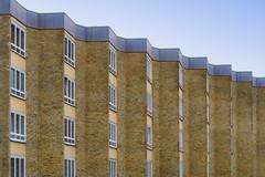 Vanishing windows (uneitzel) Tags: architecture architektur building fenster gebäude hamburg mzuiko40150mm olympusem5 repetition wall wand window