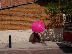Calle (Tahia Hourria) Tags: mexique guadalajara mexico amerique thai hourria tahia houria nora caabi aitaissa rue street calle photo parapluie umbrella rose pink trottoir