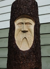 Wood Carving (How.I.E) Tags: carving wood art artistic natural folk bark tree stump cut fir hemlock green face design beard moustache dead head imbedded 3d dimension depth awesome amazing beautiful great fabulous fantastic best fine finest nice nicest