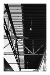 . (Alex Sander S.) Tags: epsonv500 m3 classicblackwhite filmphotography adoxsilvermax iso100 frankfurt osthafen urbanphotography caffenol classicblackandwhite film zmplanar leicam3 adox leitz messsucher carlzeiss carlzeissplanar urban 35mmfilm planart analog leica