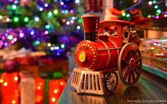 Toyland Express (AreKev) Tags: 2008 toylandexpress toyland express train loco locomotive engine hallmark christmas tree hallmarkkeepsake keepsake ornament decoration lights bokeh xmas nikond7100 nikon d7100 sigma 1020mm 1020mmf456exdchsm