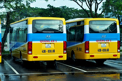 At the depot (Roving I) Tags: buses publictransport danang danabus depots waiting trees parking puddles wet shine vietnam