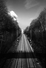 Tracks (Isengardt) Tags: bridge brücke view aussicht tracks schienen zug bahn train railway monochrome monochrom kontrast contrast fluchtpunkt bäume trees masten wolke cloud himmel sky schatten shadow stuttgart kurpark badenwürttemberg deutschland germany olympus omd em1 1250mm