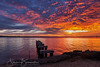 Sunrise, Beaumaris, Victoria (brunialti.susan) Tags: bayside nature sunrise