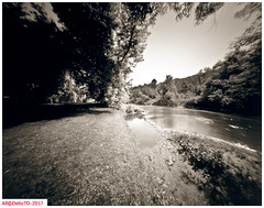 Summer on the Credit river (DelioTO) Tags: 4x5 adoxchs100 aph09 autaut blackwhite canada f175 july landscape ontario panoramic pinhole rural summer toned trails woods