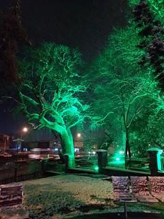 Anibal Park - Gebze