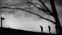 F_47A2432-2-BW-1-Canon 5DIII-Canon 70-300mm-May Lee 廖藹淳 (May-margy) Tags: 旅 侶 maymargy 人像 剪影 樹木 路標 山路 模糊 散景 雲彩 街拍 streetviewphotographytaiwan 線條造型與光影 linesformandlightandshadows 天馬行空鏡頭的異想世界 mylensandmyimagination 心象意象與影像 naturalcoincidencethrumylens 台北市 台灣 中華民國 陵線 taiwan repofchina f47a24322bw1 portrait hill silhouette trail sign tree blur bokeh clouds taipeicity canon5diii canon70300mm maylee廖藹淳 旅侶