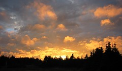 Fire in the sky (dacardoso) Tags: sunset newfoundland