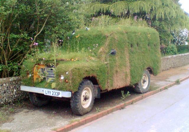 grass lawn flowerbed landrover landroverseriesiii