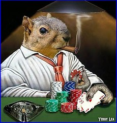 When you're hot, you're hot ! (Terry_Lea) Tags: squirrel squirrels poker photoshopfun tbas