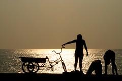 Sunset in Havana (let's fotografar) Tags: sunset pordosol people bike backlight contraluz gold gente spyshot havana cuba bicicleta dourado malecn silhueta paulamarina interestingnees semana26