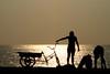 Sunset in Havana (let's fotografar) Tags: sunset pordosol people bike backlight contraluz gold gente spyshot havana cuba bicicleta dourado malecón silhueta paulamarina interestingnees semana26