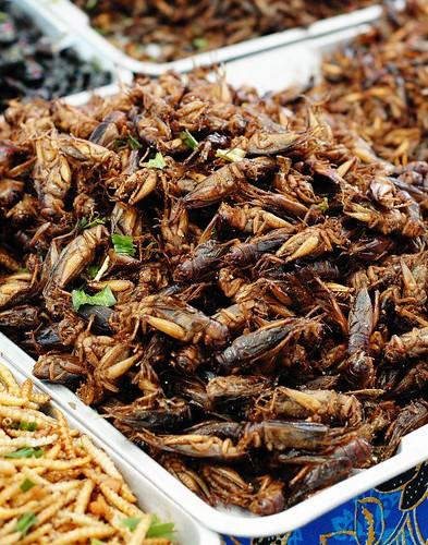 Insectos fritos en el mercado de Pratuman